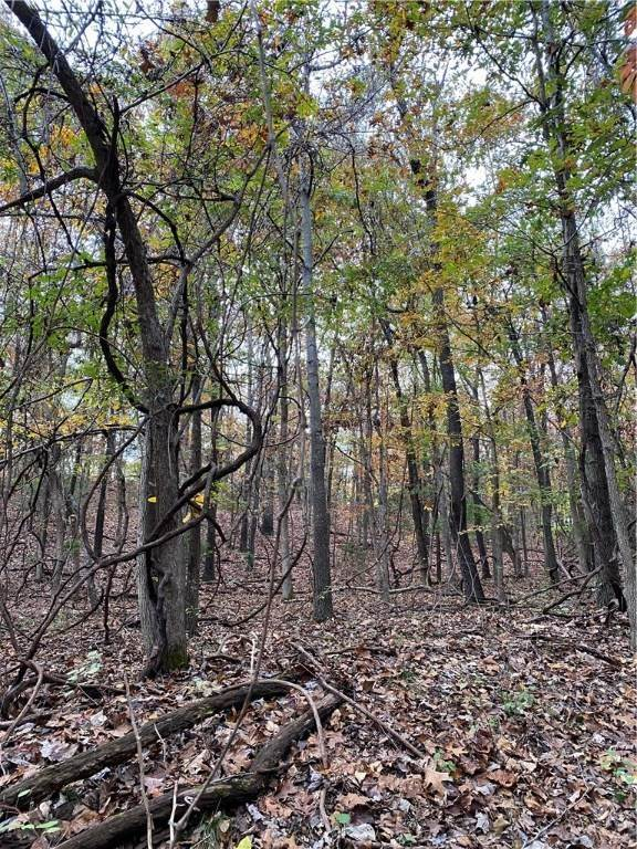 3. Land for Sale at Lot 25 S Canary Drive Rogers, Arkansas 72756 United States