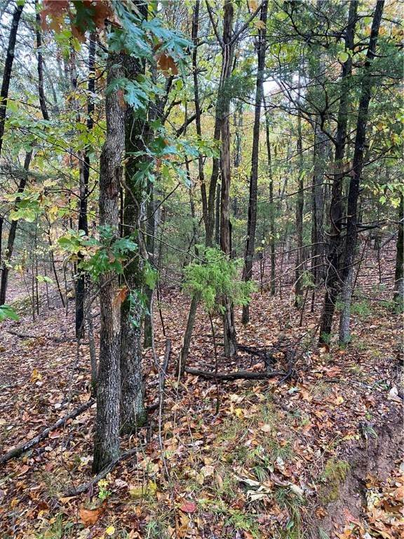 4. Land for Sale at Lot 3 Rocky Branch Road Rogers, Arkansas 72756 United States
