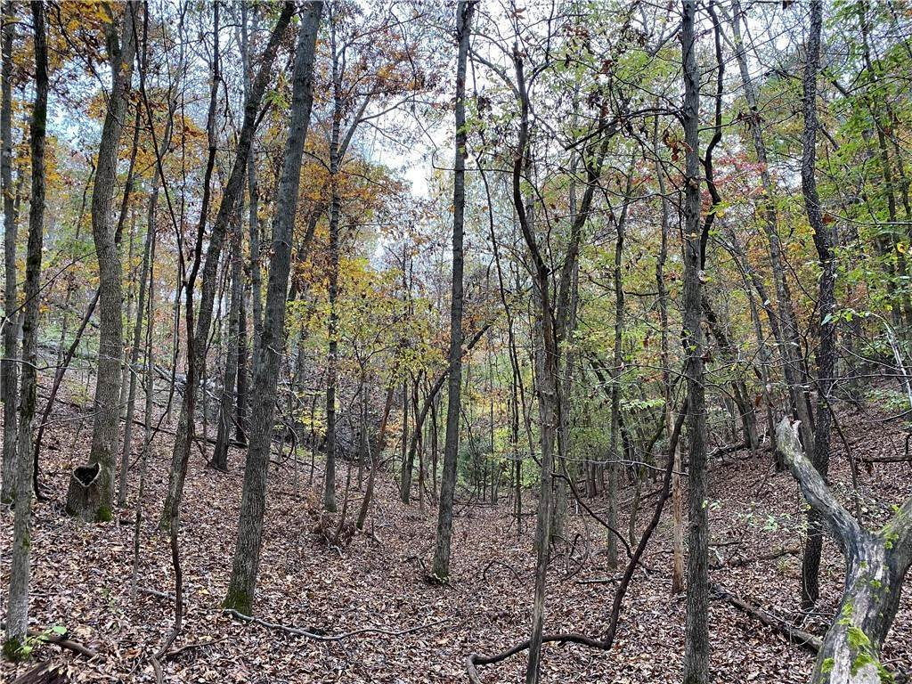 6. Land for Sale at Lot 3 Rocky Branch Road Rogers, Arkansas 72756 United States