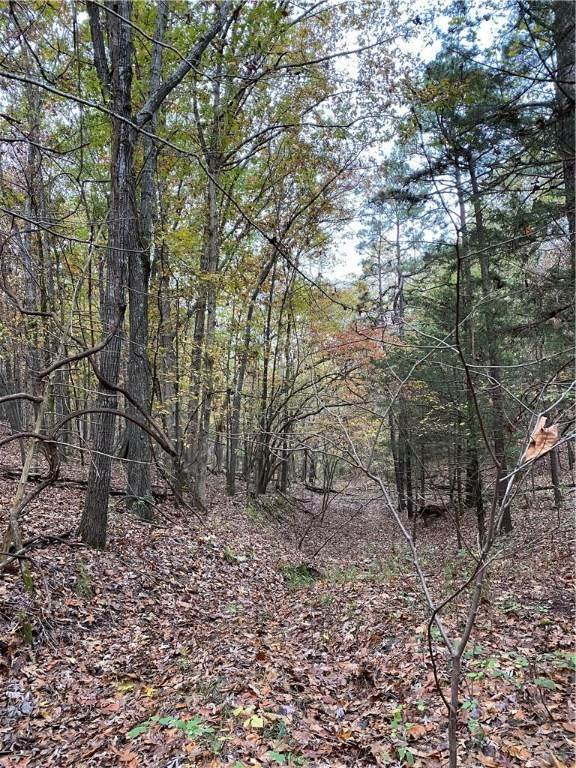 Land for Sale at Lot 5 Rocky Branch Road Rogers, Arkansas 72756 United States