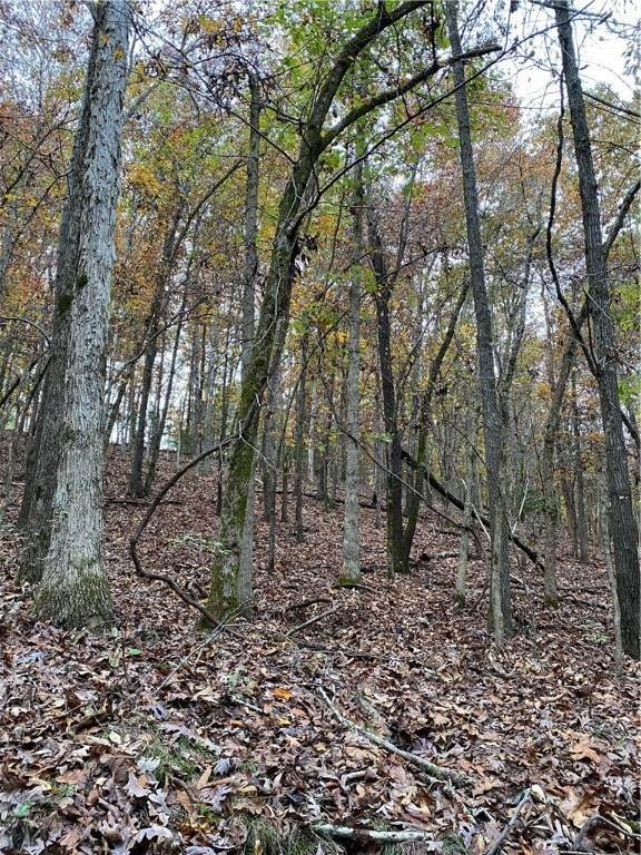 8. Land for Sale at Lot 5 Rocky Branch Road Rogers, Arkansas 72756 United States