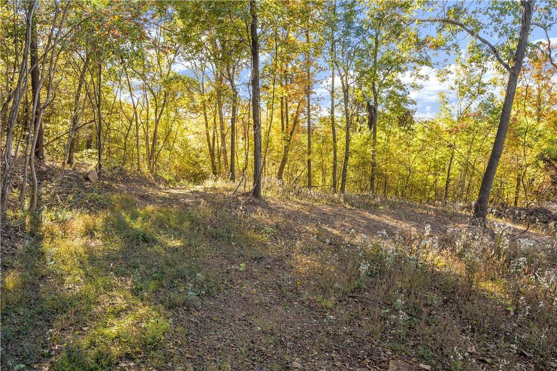 Land for Sale at County Road Elkins, Arkansas 72727 United States