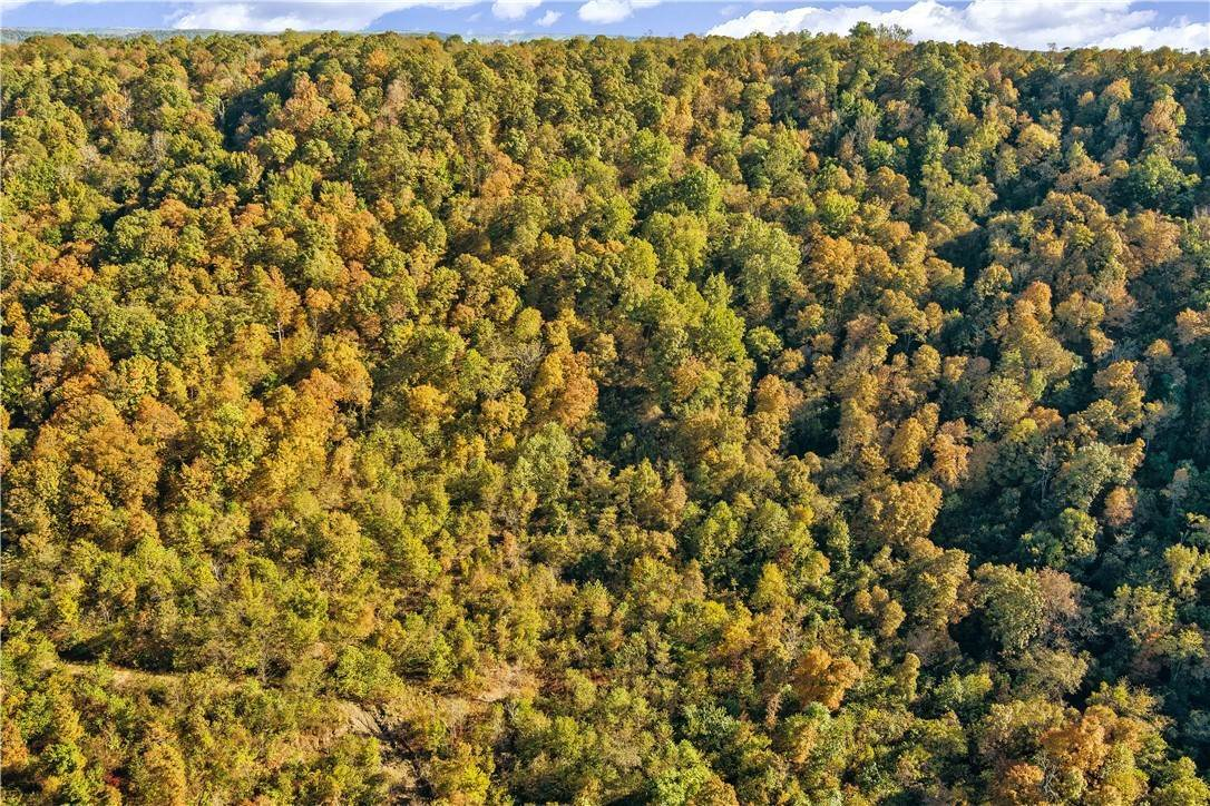 10. Land for Sale at County Road Elkins, Arkansas 72727 United States
