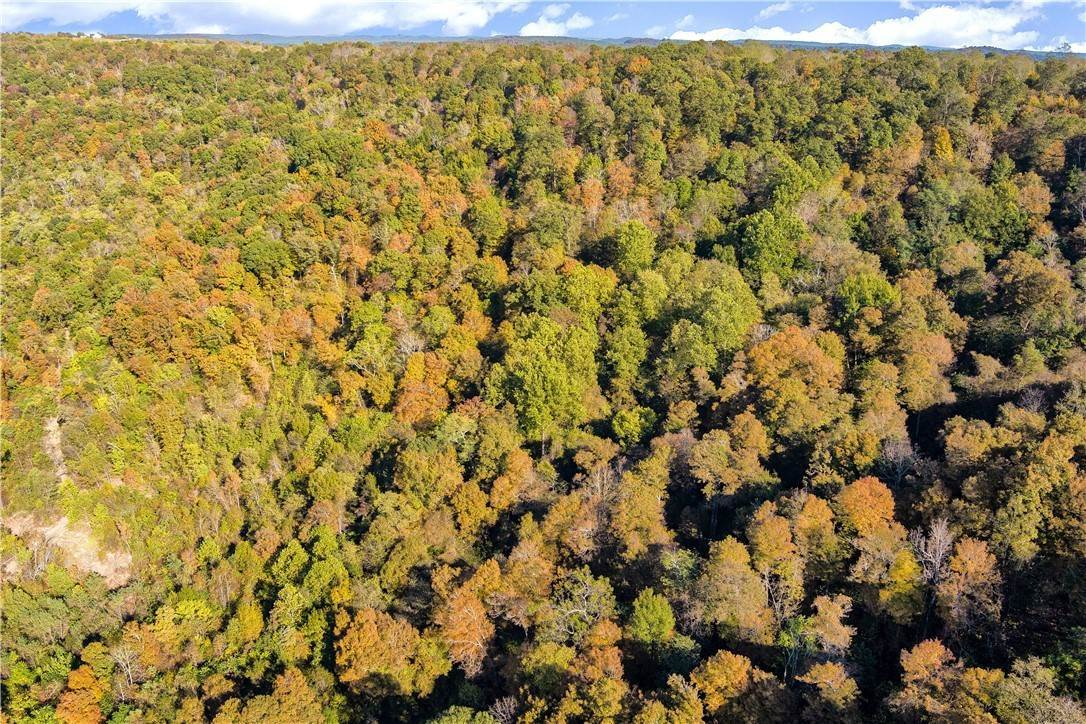 11. Land for Sale at County Road Elkins, Arkansas 72727 United States