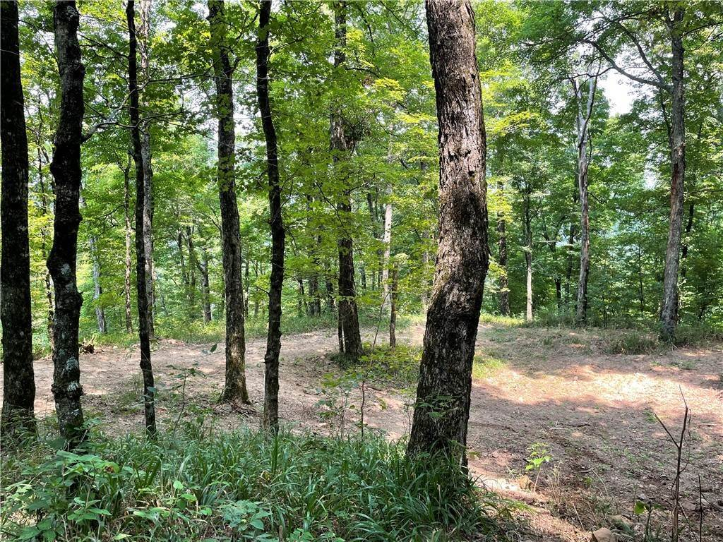 12. Land for Sale at County Road Elkins, Arkansas 72727 United States