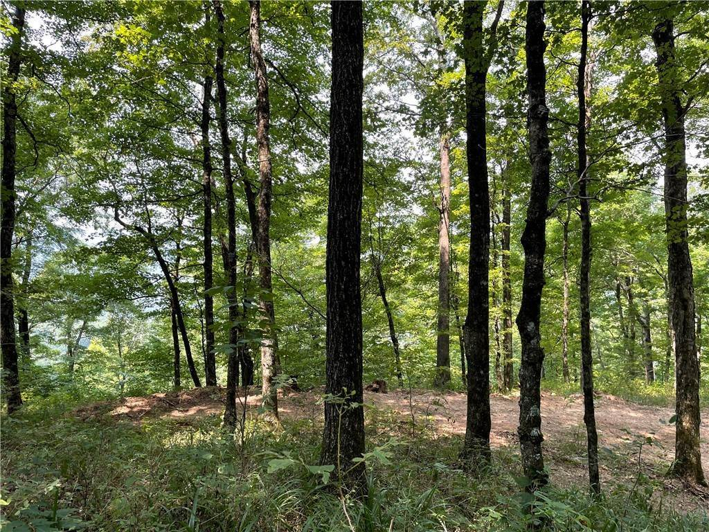 13. Land for Sale at County Road Elkins, Arkansas 72727 United States