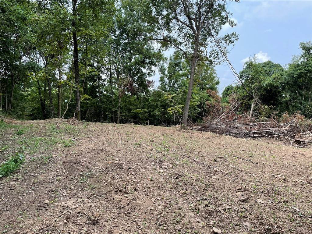 16. Land for Sale at County Road Elkins, Arkansas 72727 United States