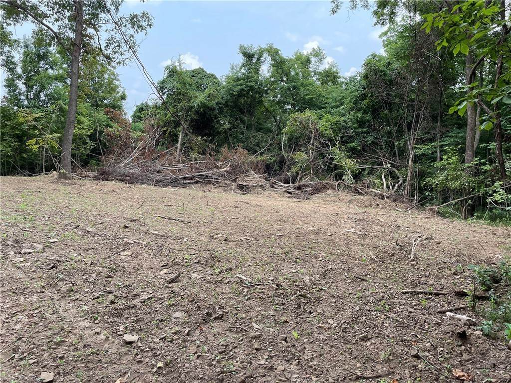 17. Land for Sale at County Road Elkins, Arkansas 72727 United States