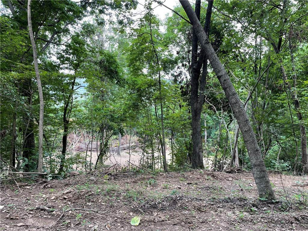 19. Land for Sale at County Road Elkins, Arkansas 72727 United States