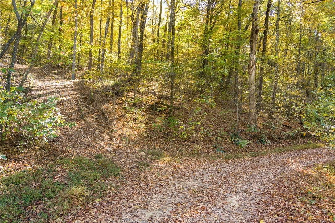 2. Land for Sale at County Road Elkins, Arkansas 72727 United States