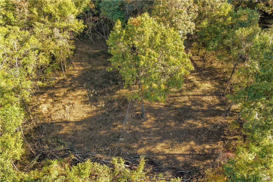3. Land for Sale at County Road Elkins, Arkansas 72727 United States