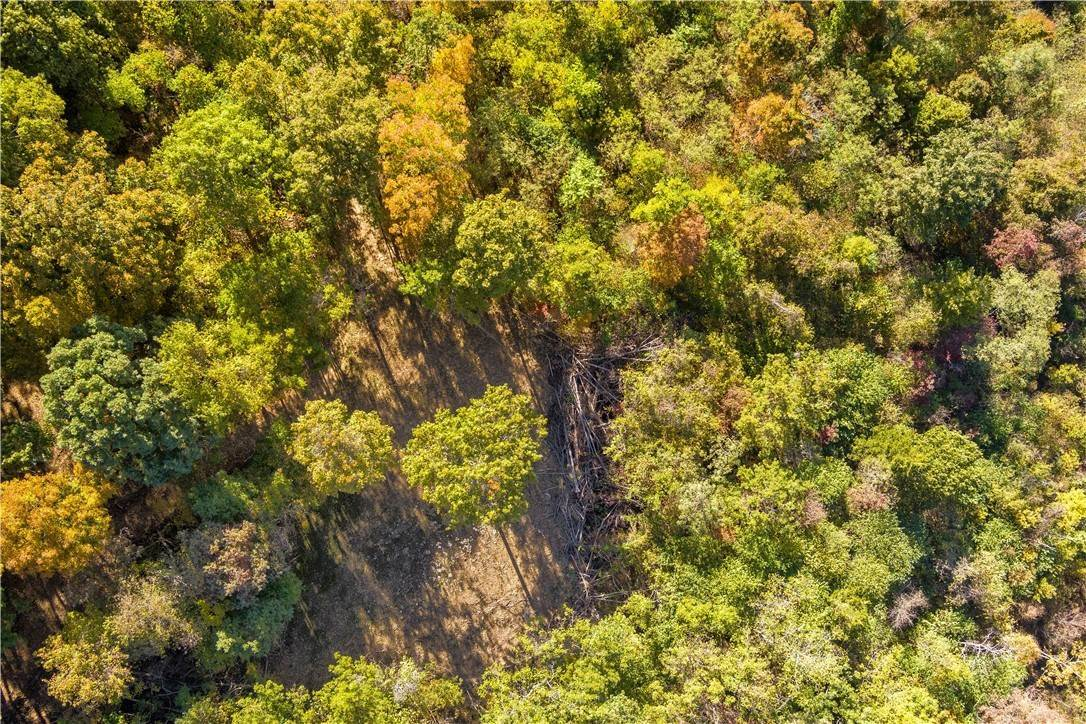 5. Land for Sale at County Road Elkins, Arkansas 72727 United States