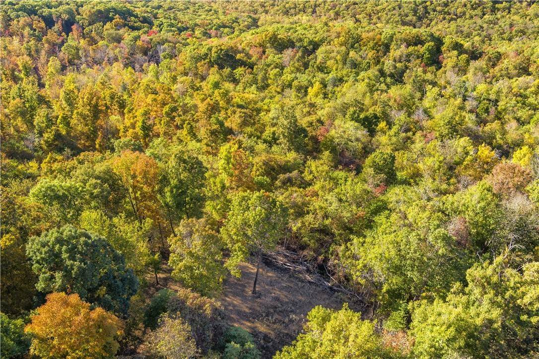 6. Land for Sale at County Road Elkins, Arkansas 72727 United States