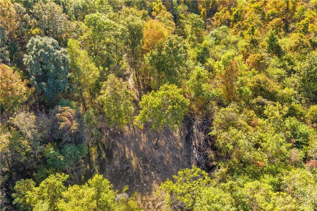 7. Land for Sale at County Road Elkins, Arkansas 72727 United States