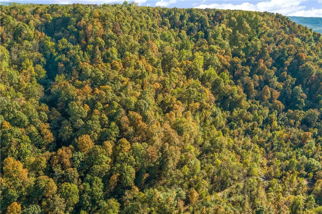 9. Land for Sale at County Road Elkins, Arkansas 72727 United States