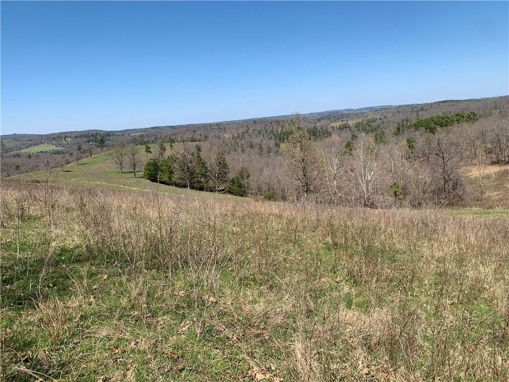 Land for Sale at Cord 1103 Road Eureka Springs, Arkansas 72632 United States