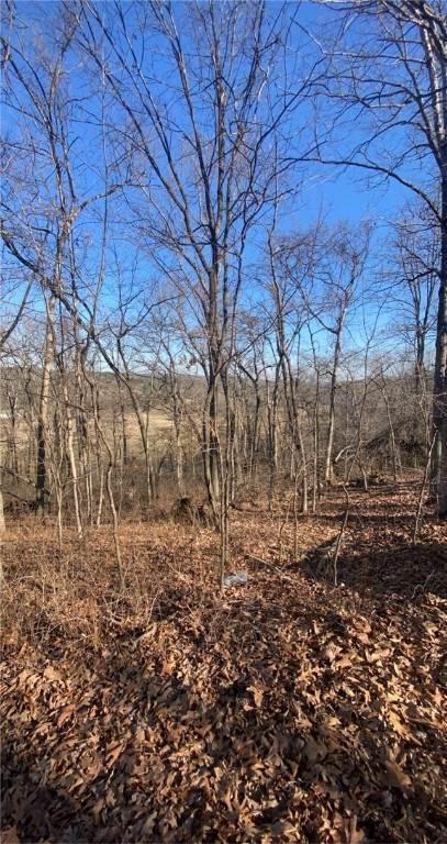 Land for Sale at -- Cullen Hills Drive Bella Vista, Arkansas 72715 United States