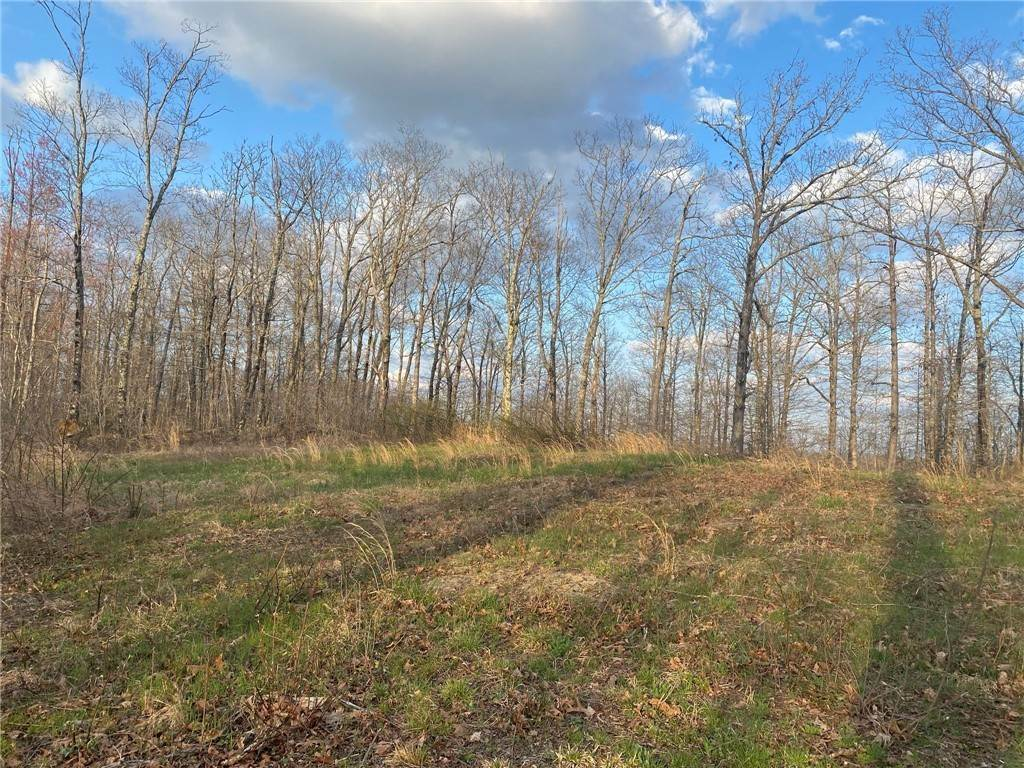 Land for Sale at 27062 highway 16 Witter, Arkansas 72776 United States