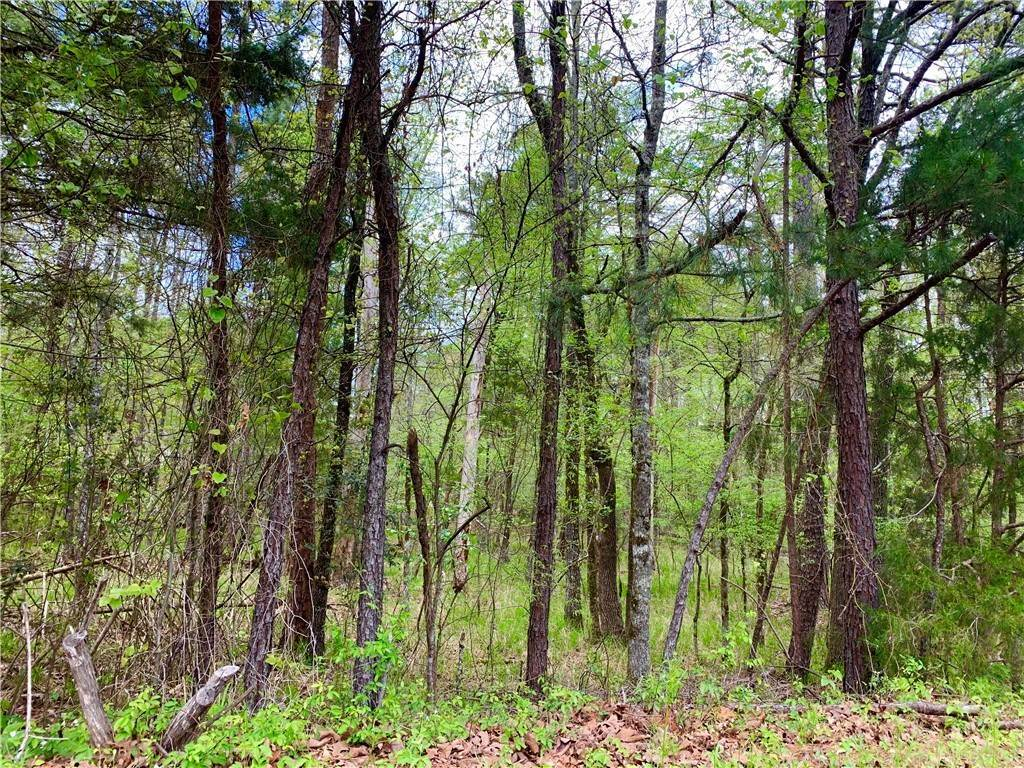 Land for Sale at Jabali Way Hot Springs, Arkansas 71909 United States
