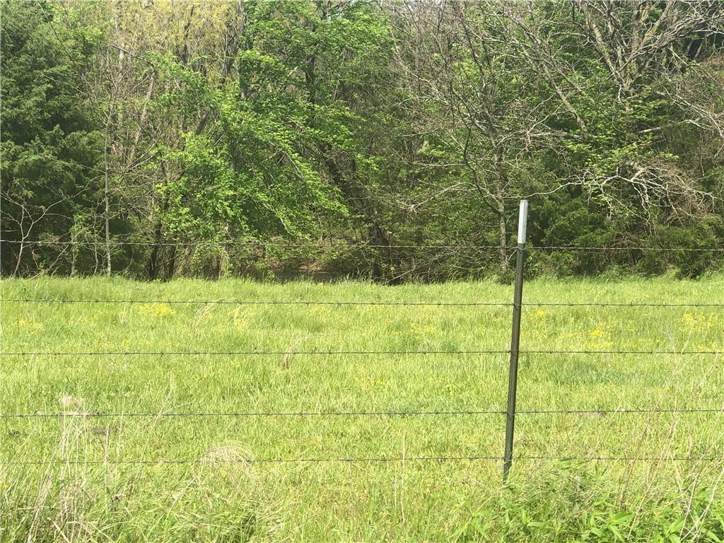 Land for Sale at Tract A Hale Mountain Road Canehill, Arkansas 72717 United States
